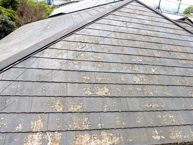屋根の塗装時期はいつなの? 耐用年数や塗料の種類・ポイントについて徹底解説!